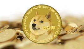 Did Aziz McMahon really quit Goldman Sachs after making millions from Dogecoin?